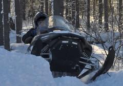 vif_winter_skidoot2