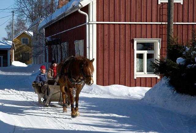 Horse sledge riding