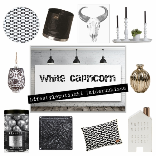 white_capricorn_pieni_flyer_someen.jpg