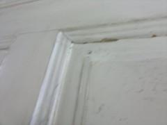 Osassa ovista maalia n 0,5-1cm