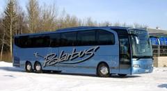 Polarbus