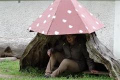 Sateen sattuessa suojassa