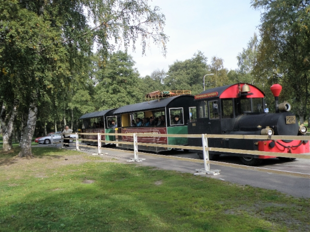 Kake kaupunkijuna ja vanhan Rauman kierros