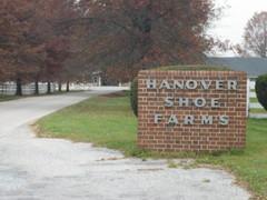 Hanover Shoe Farms