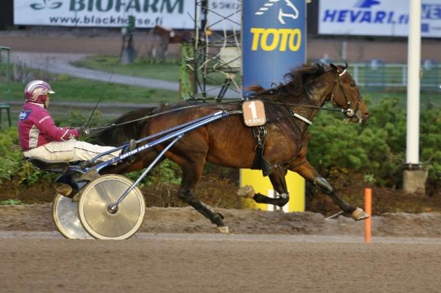 Plisetska Birdland Vermo 241018 c) Kaisa Stengård