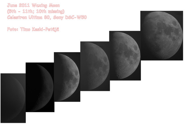 kuvakooste harmaasavyina kuu 5.-11.6.2011