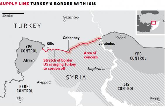 Turkeys-Border.jpg