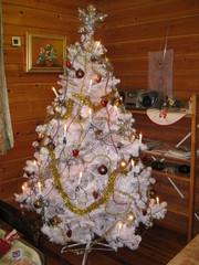jouluna_2011_017