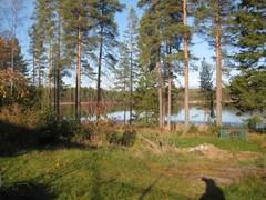 metsaviikko_17.10.14_009