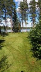 Nurmialueiden vieressä pensasaidanteet