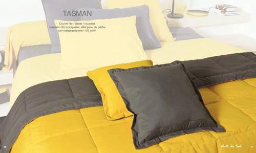 16-17_tasman