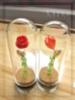Kukka lasikupussa