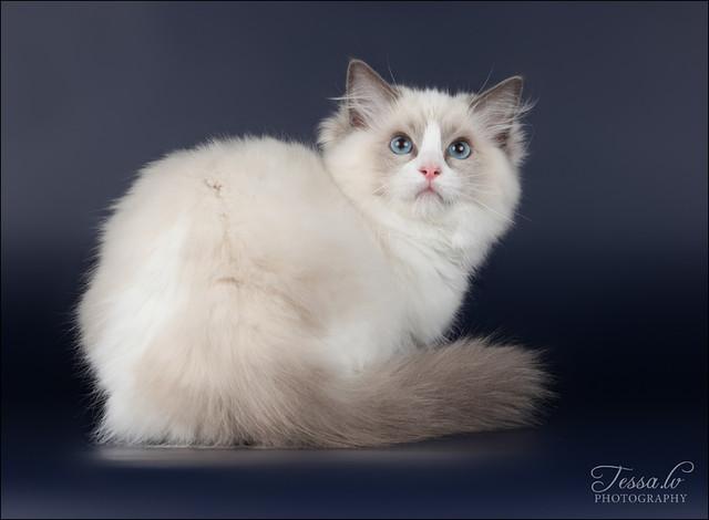 Elena 4,5 months