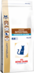 gastro_intestinal_moderate_calorie_product_bag-110cak3vk6o.png&width=200&height=250