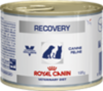 recovery_wet_product_bag-110.png&width=400&height=500