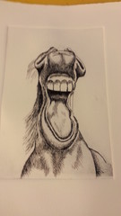 Hevosenleikki