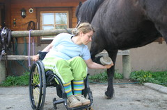 Hevosen hoitoa
