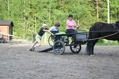 Pyörätuolikärryihin siirtyminen