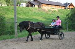 Ajaminen on yksi toimintamuoto ratsastusterapiassa