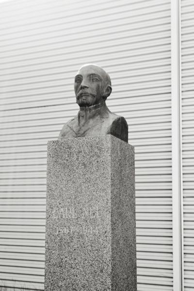 Carl Neu, Virrat