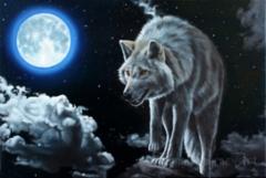 Tonight I hunt alone