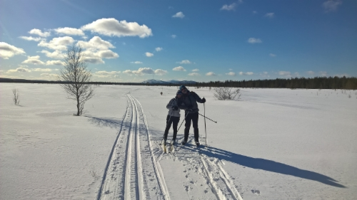 cross-country_skiing_at_pyha-luosto_area.jpg