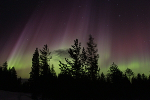 Northern_lights_at_Pyha_-_Luosto_