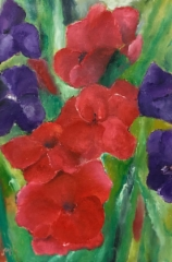 Gladiolus, 2015 oil on canvas 48 x 70 cm