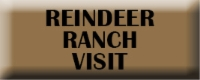 Reindeer Ranch Visit