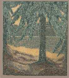 Kuusi/The Spruce