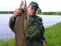 From Tornio river