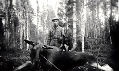 Simo in elk hunt, accompanied by his devoted dog kille.