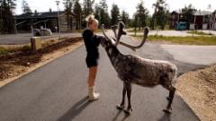 2012-7-13_944_kirsikka__reindeer_motojysky_isne