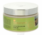 NY_BILD_Bio-Spa-Anti-cellulite-Cream.jpg&width=140&height=250