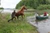 Hauska kuvasarja Ripan veteen menosta