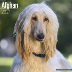 afghan21etu