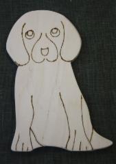 koira1m