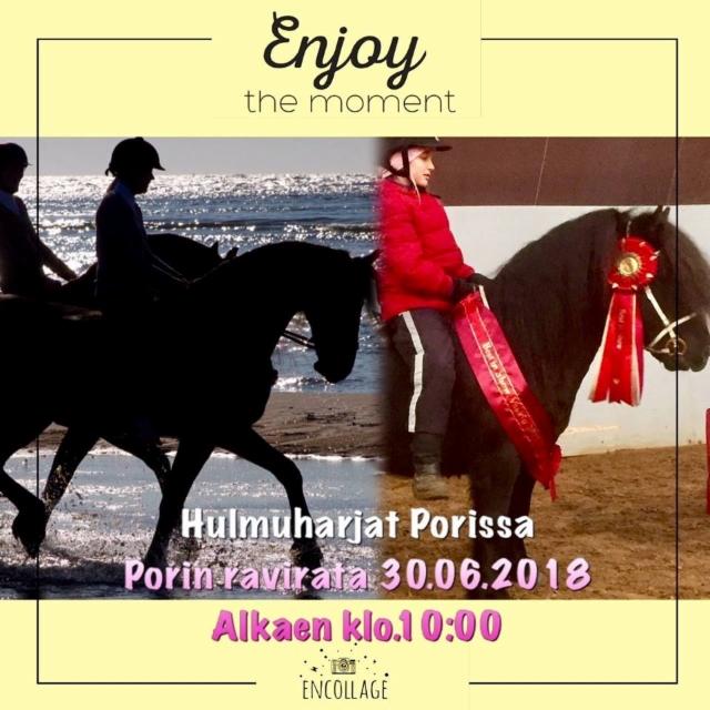 hulmuharjat_porissa_kuva