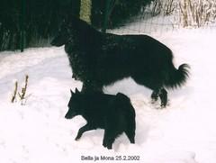 Bella ja Mona 25.2.2002  1v2kk