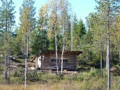 Kuvausrakennus on metsän siimeksessä.