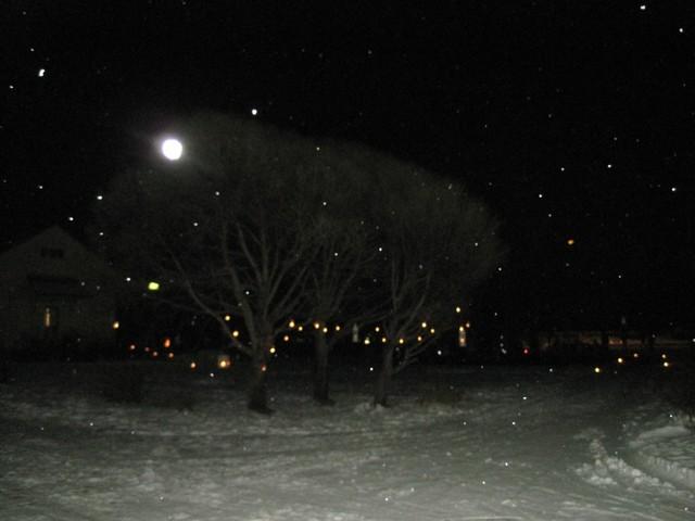 16.12. Koulun joulupolku