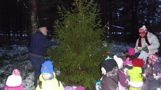 11.12. Metsäneläinten joulupuun koristelua