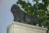 25._ita-viro_narvan_ruotsin_leijona._photo__hannu_sinisalo