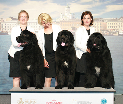 kennel_haumean_bestbreeder-iii_with_honorary_prize_worlddogshow2014_5179_400pix.jpg