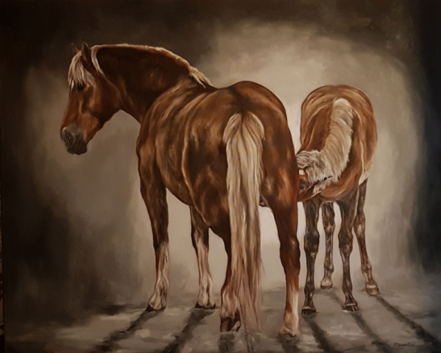 Finnhorse mare and foal