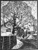 Näkymä Porvoosta, linopiirros 30 x 40 cm, vedoksia 25 kpl. Hinta 150 €