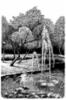 Vesipuisto, tussipiirros, 18 x 26 cm. Hinta 120 €