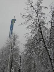 Wellamo-viiri Heinolatalon lipputangossa