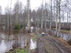 Vesi korkealla 30.12.2013