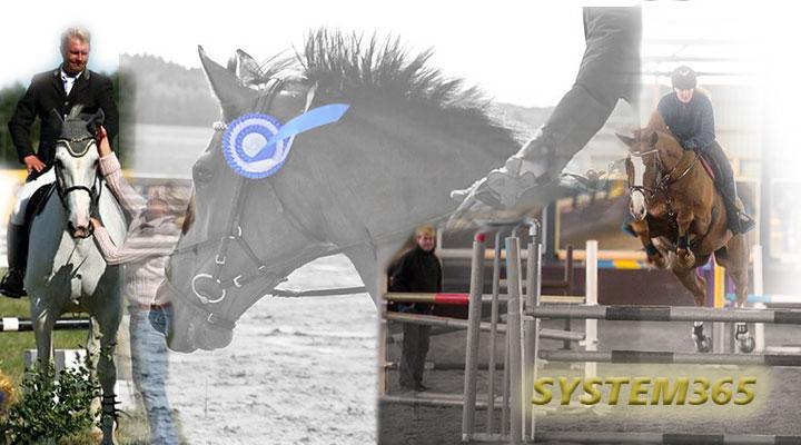 system365_2_011214.jpg